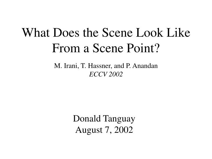 What does the scene look like from a scene point
