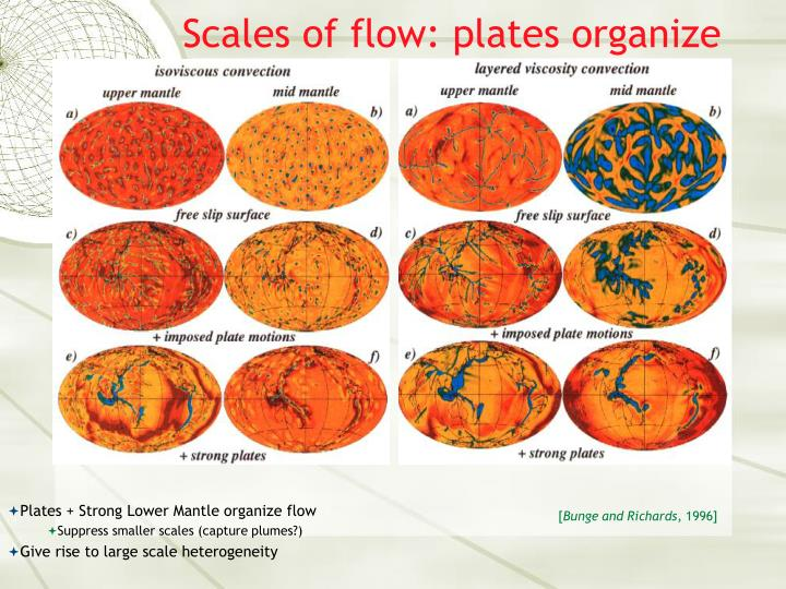 Scales of flow: plates organize