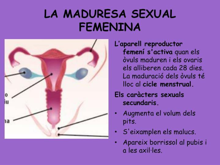 LA MADURESA SEXUAL FEMENINA