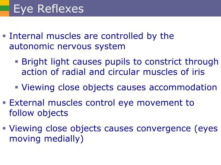 Eye Reflexes