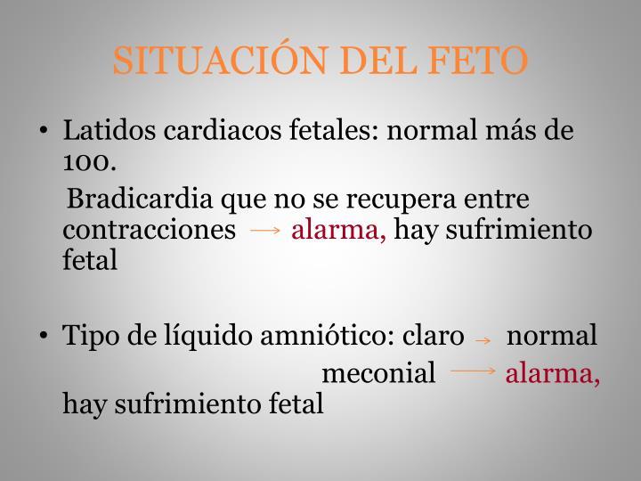 SITUACIÓN DEL FETO