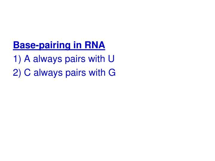 Base-pairing in RNA