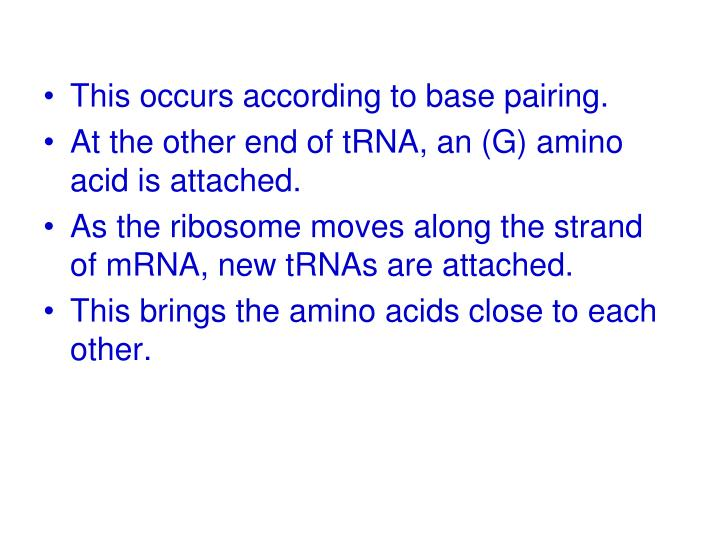 This occurs according to base pairing.