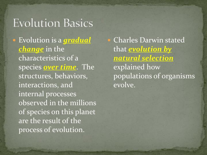 Evolution Basics