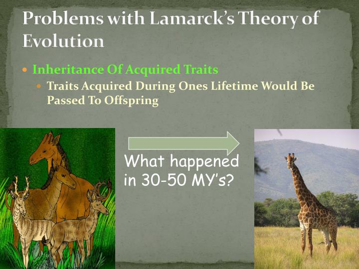 Problems with Lamarck's Theory of Evolution