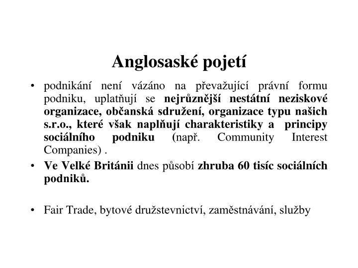 Anglosaské pojetí