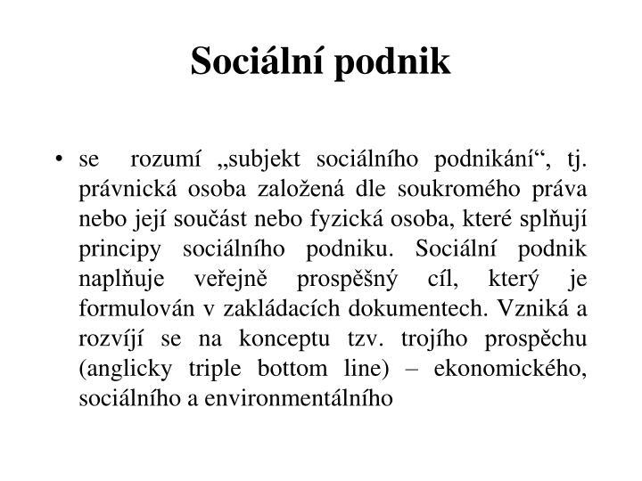 Sociální podnik