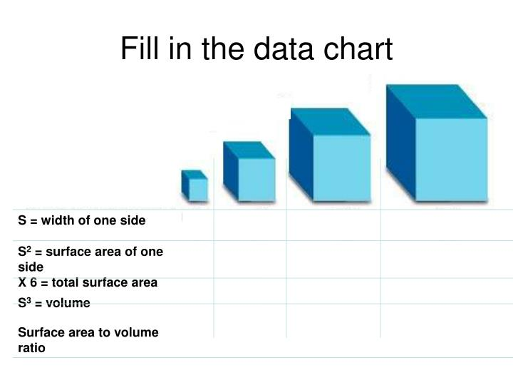 Fill in the data chart