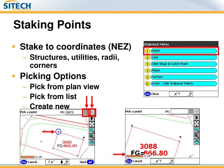 Staking Points