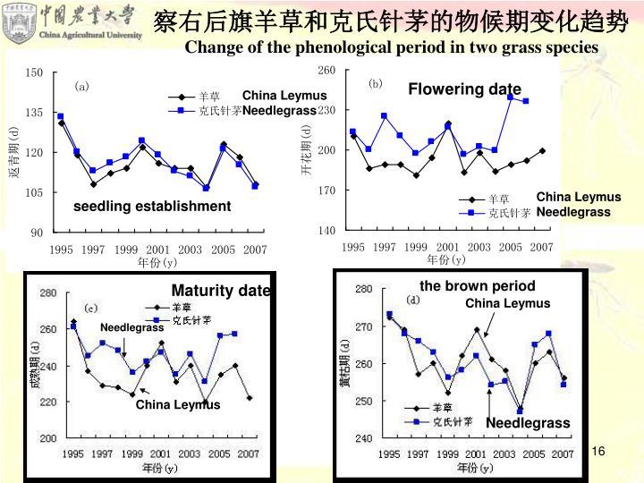 察右后旗羊草和克氏针茅的物候期变化趋势
