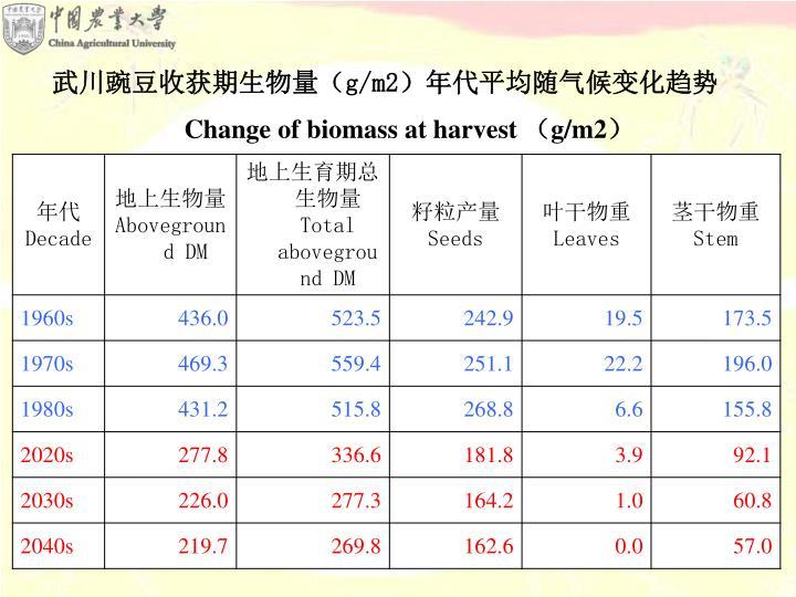 武川豌豆收获期生物量(