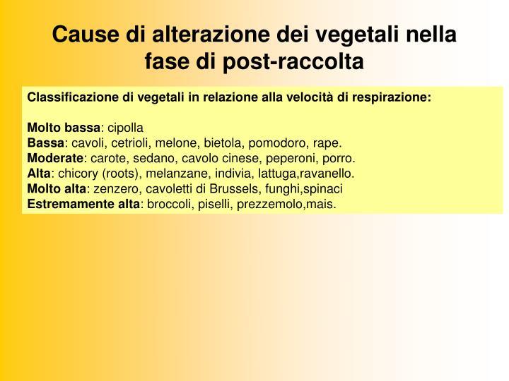 Cause di alterazione dei vegetali nella fase di post-raccolta