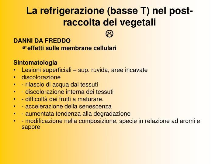 La refrigerazione (basse T) nel post-raccolta dei vegetali