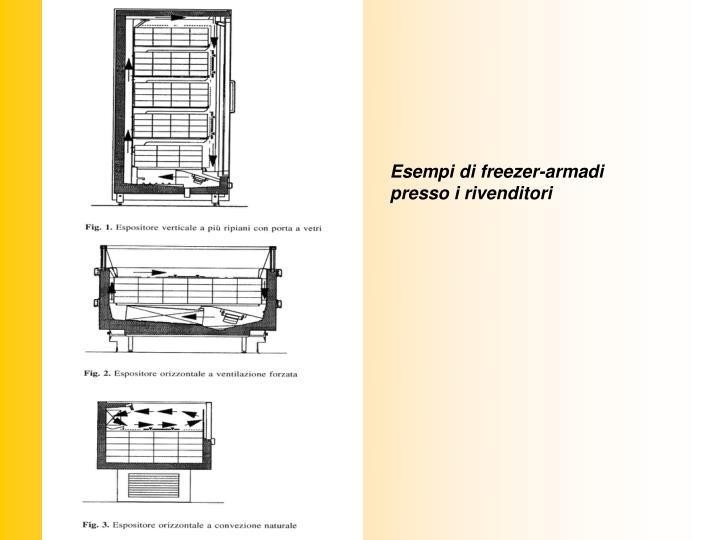 Esempi di freezer-armadi presso i rivenditori