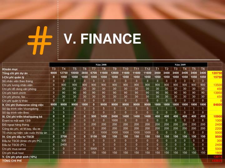 V. FINANCE