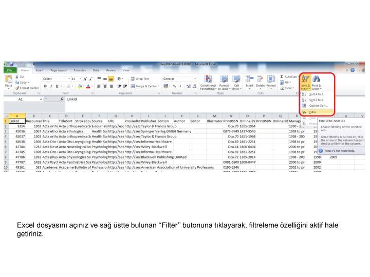 Excel dosyasını açınız ve sağ üstte bulunan ''Filter'' butonuna tıklayarak, filtreleme özelliğini aktif hale getiriniz.