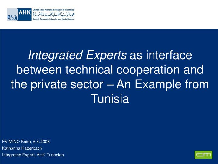Integrated Experts