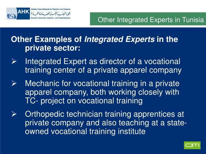 Other Integrated Experts in Tunisia