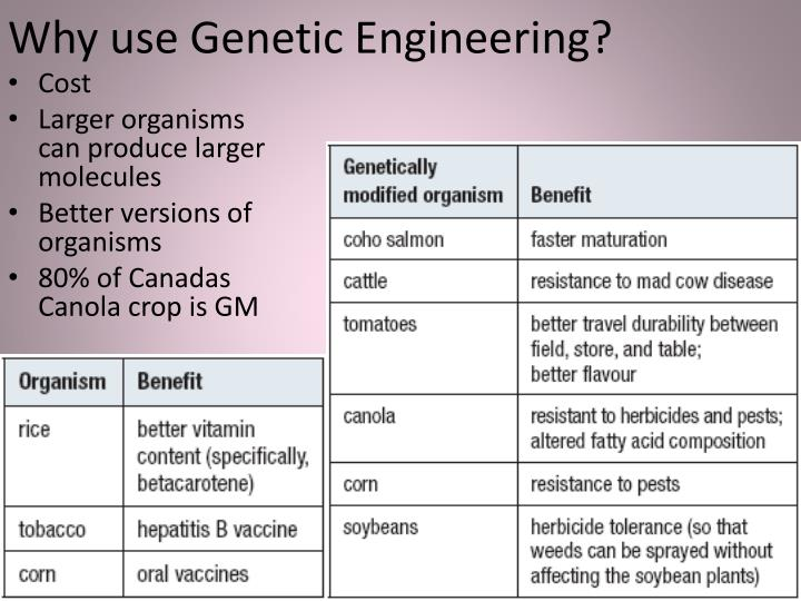 Why use Genetic Engineering?