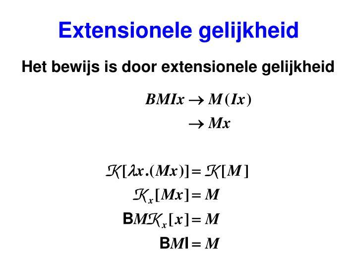 Extensionele gelijkheid