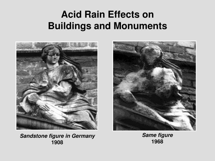Acid Rain Effects on