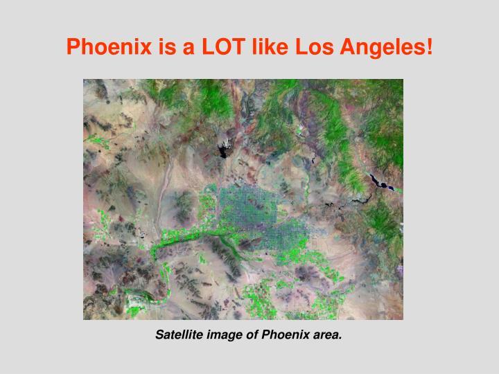Phoenix is a LOT like Los Angeles!