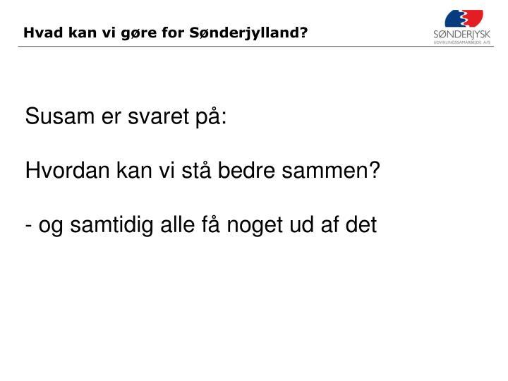 Hvad kan vi gøre for Sønderjylland?