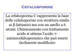 cefalosporine2