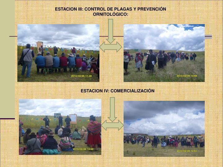 ESTACION III: CONTROL DE PLAGAS Y PREVENCIÓN ORNITOLÓGICO: