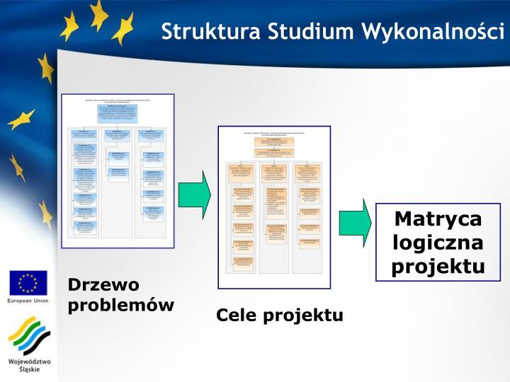 Struktura Studium Wykonalności