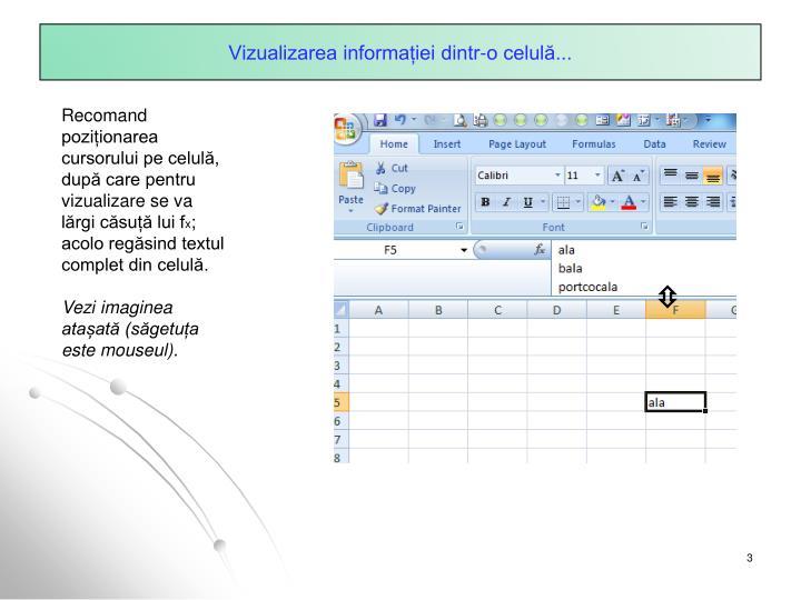 Vizualizarea informației dintr-o celulă...