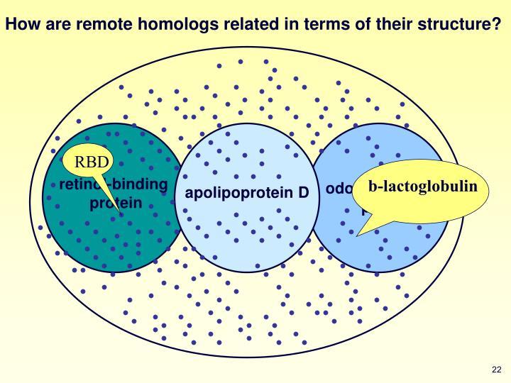 retinol-binding