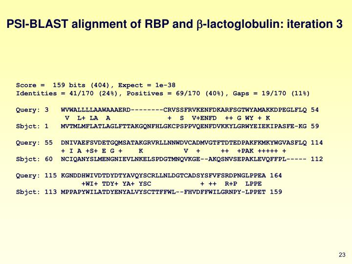 PSI-BLAST alignment of RBP and