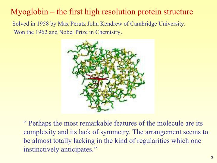 Myoglobin – the first high resolution protein structure