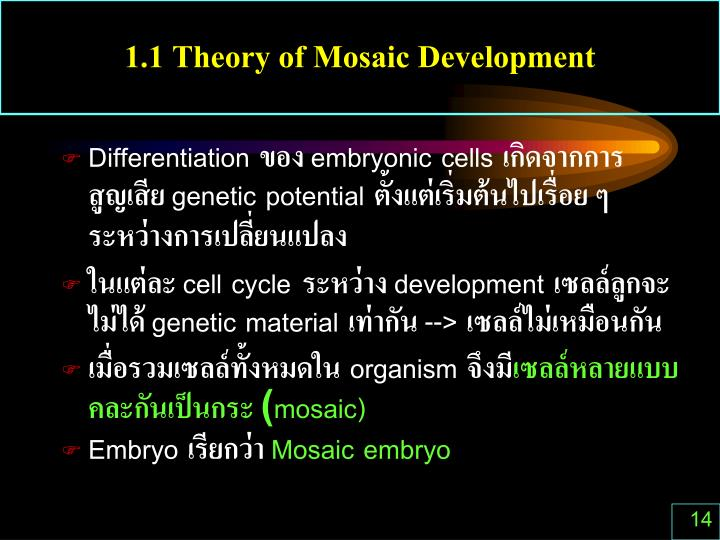 1.1 Theory of