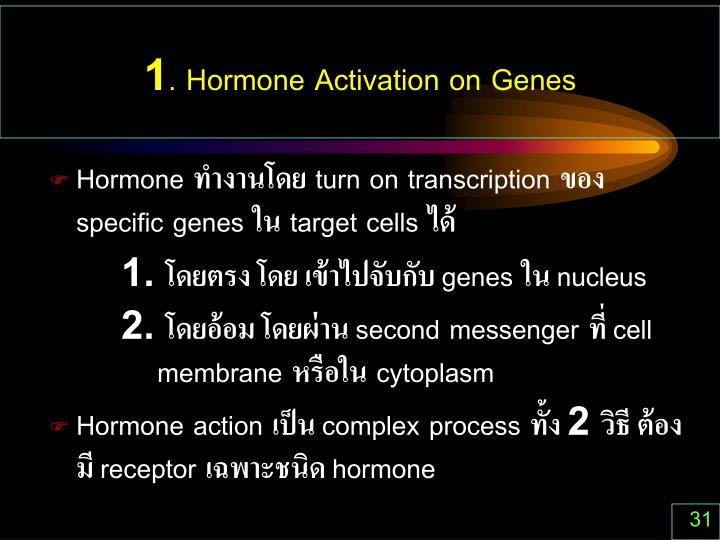 1. Hormone Activation on Genes