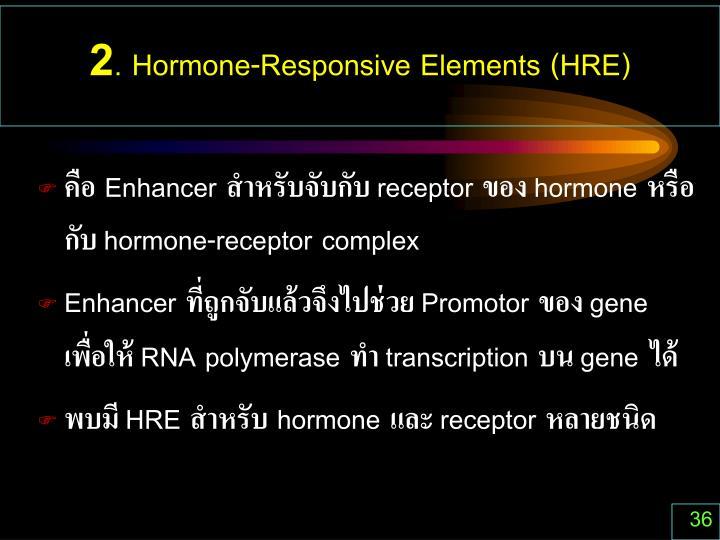 2. Hormone-Responsive