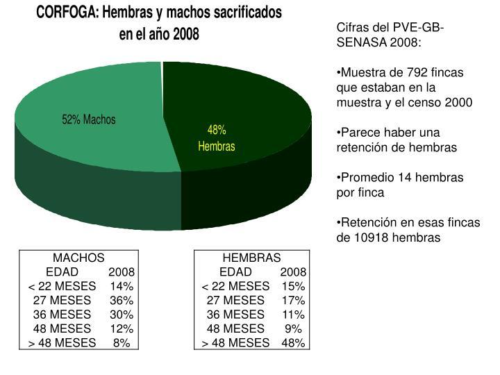 Cifras del PVE-GB-SENASA 2008: