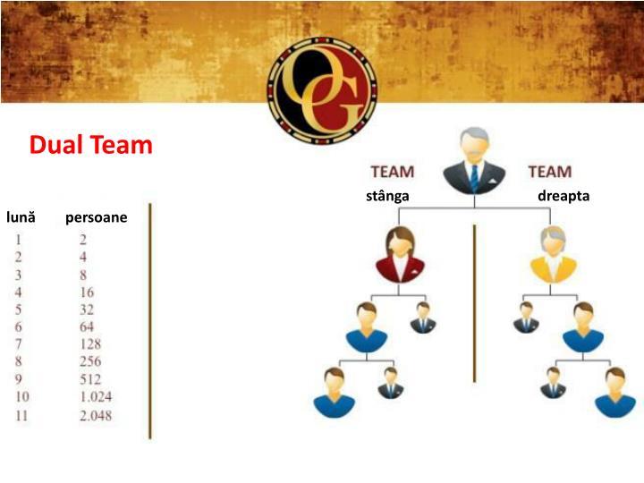 Dual Team