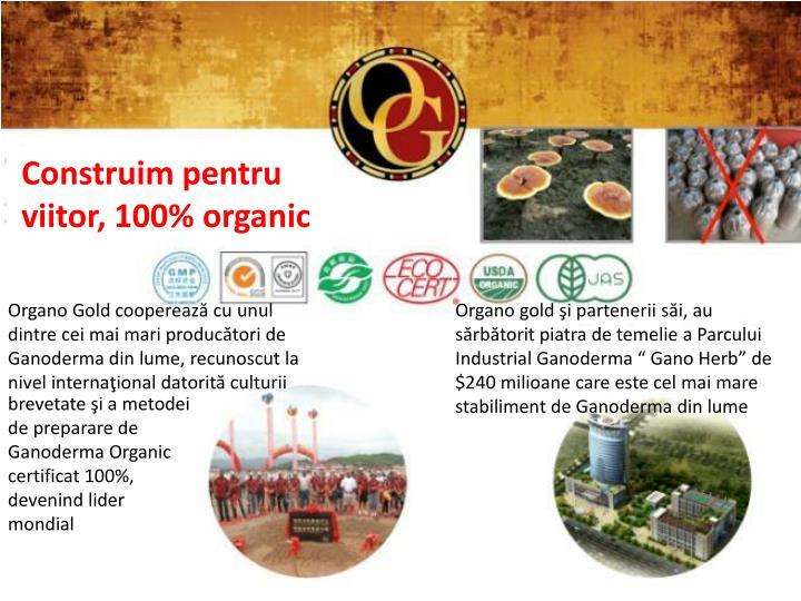 Construim pentru viitor, 100% organic