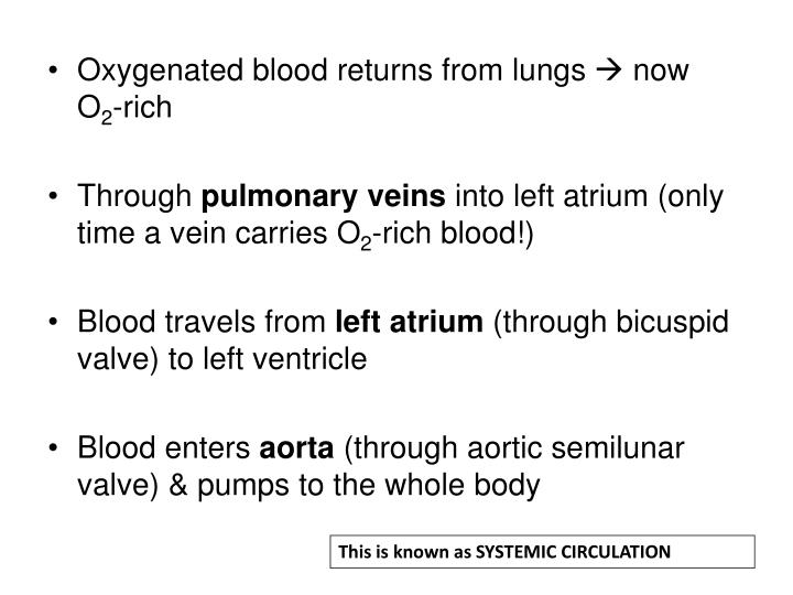 This is known as SYSTEMIC CIRCULATION