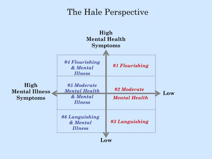 The Hale Perspective