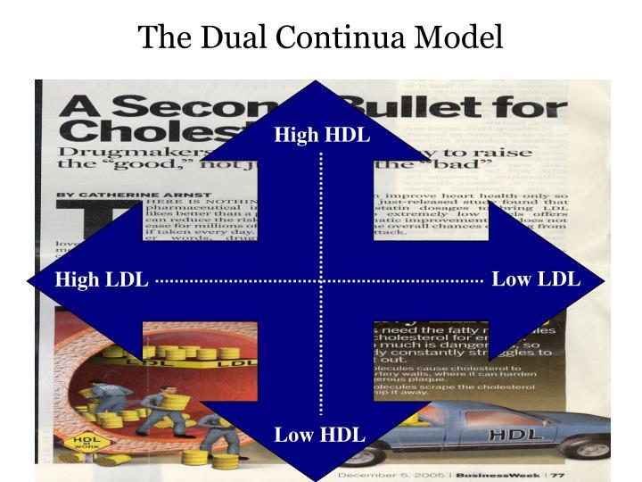 The Dual Continua Model