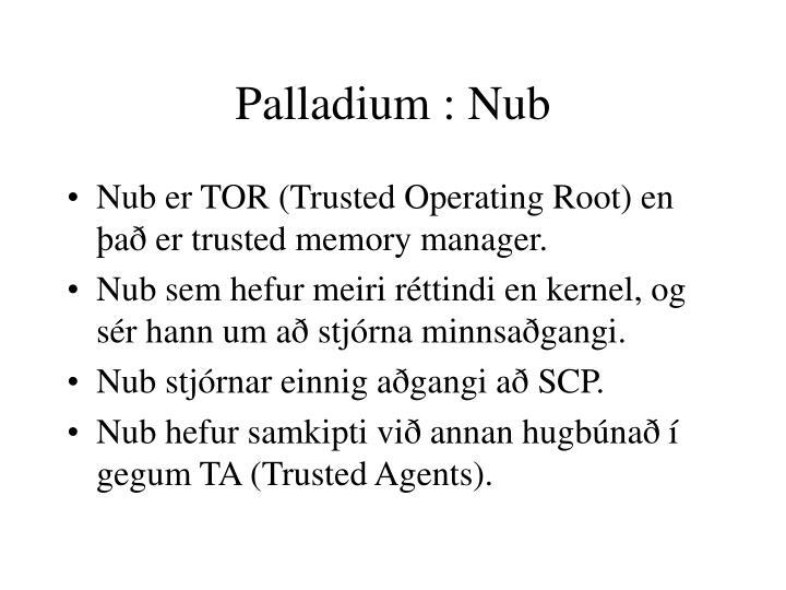 Palladium : Nub