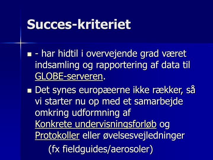 Succes-kriteriet