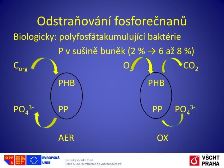 Odstraňování fosforečnanů