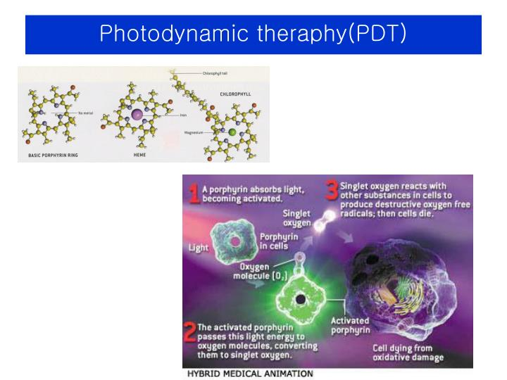 Photodynamic theraphy(PDT)