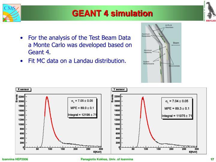 GEANT 4 simulation