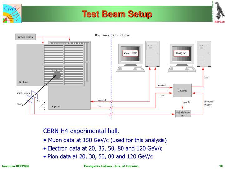 Test Beam Setup