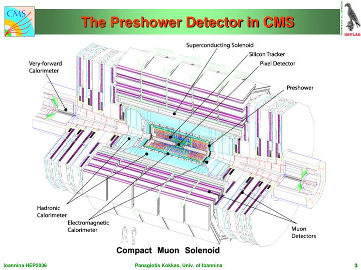 The preshower detector in cms